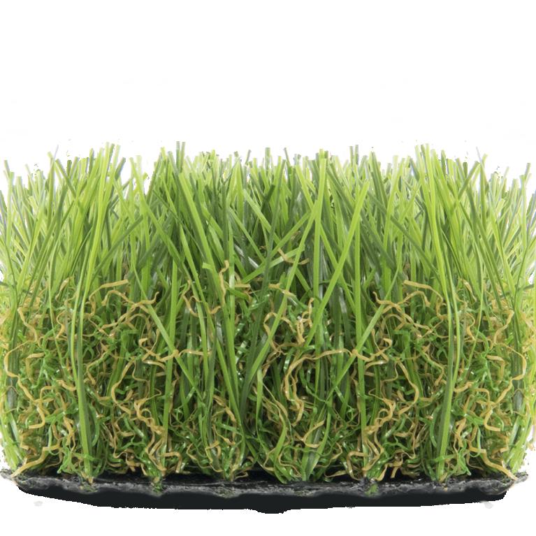 Superlawn 45 summergraze